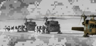 US Army AAAS